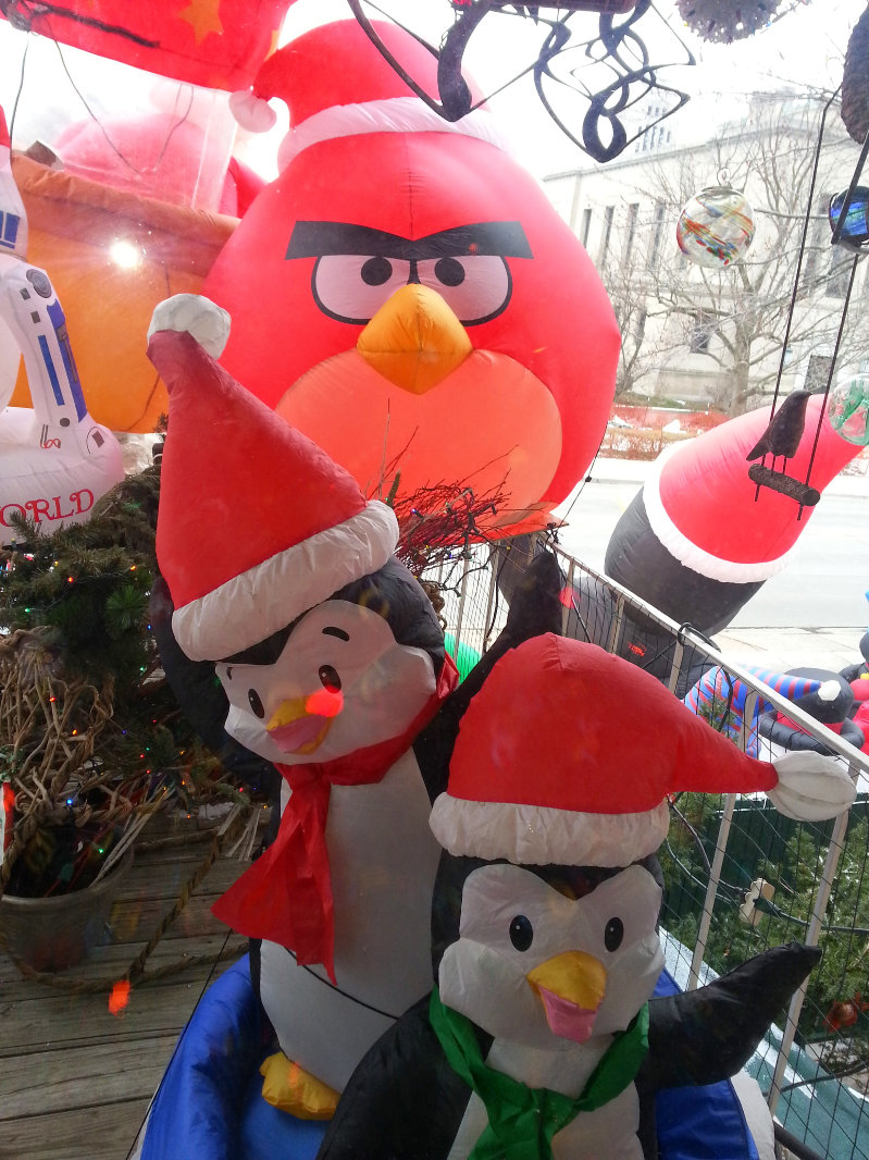 B&B front Angry Bird blowup December 2014