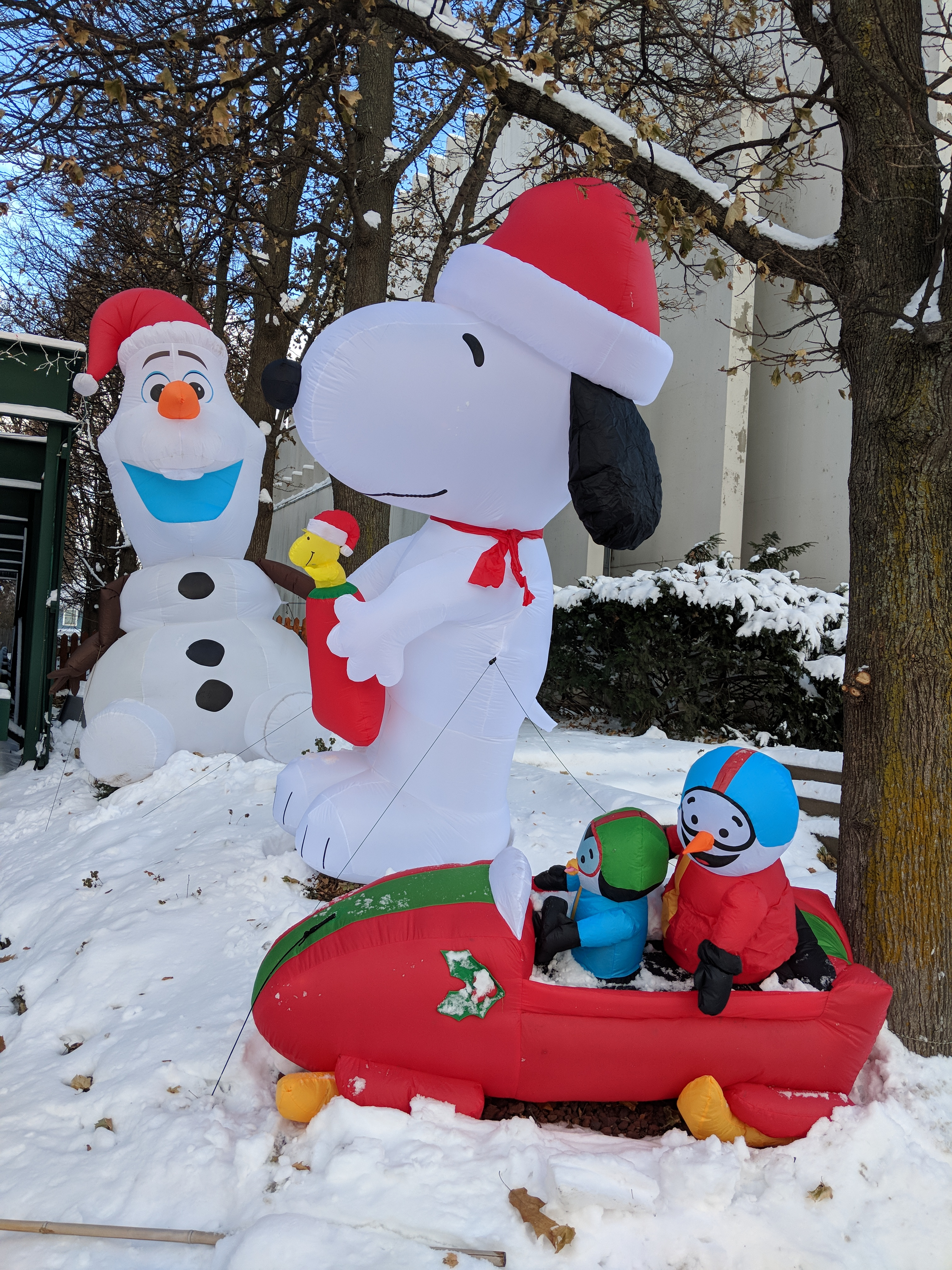 B&B front Giant Snoopy blowup winter 2017